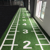 Fire Resistant Artificial Grass for Golf Gate Ball Gym Flooring