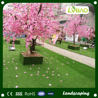 Landscaping Field and Wall Decoration and Exibition Artificial Grass
